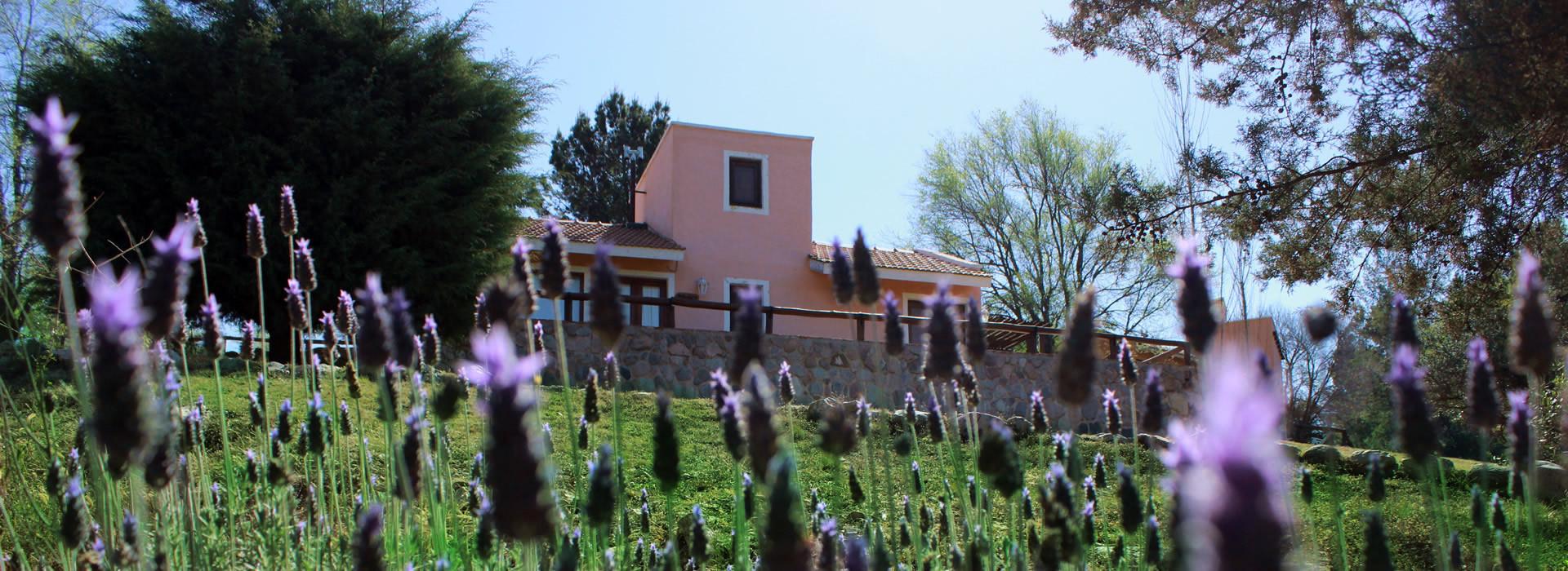 Cabaña Los Caracoles